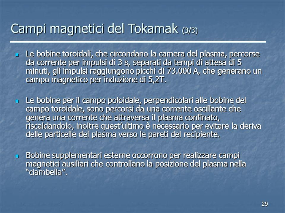 Campi magnetici del Tokamak (3/3)