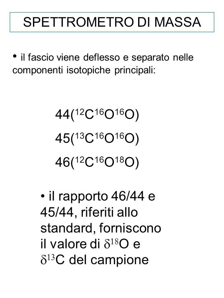 SPETTROMETRO DI MASSA il fascio viene deflesso e separato nelle componenti isotopiche principali: 44(12C16O16O)