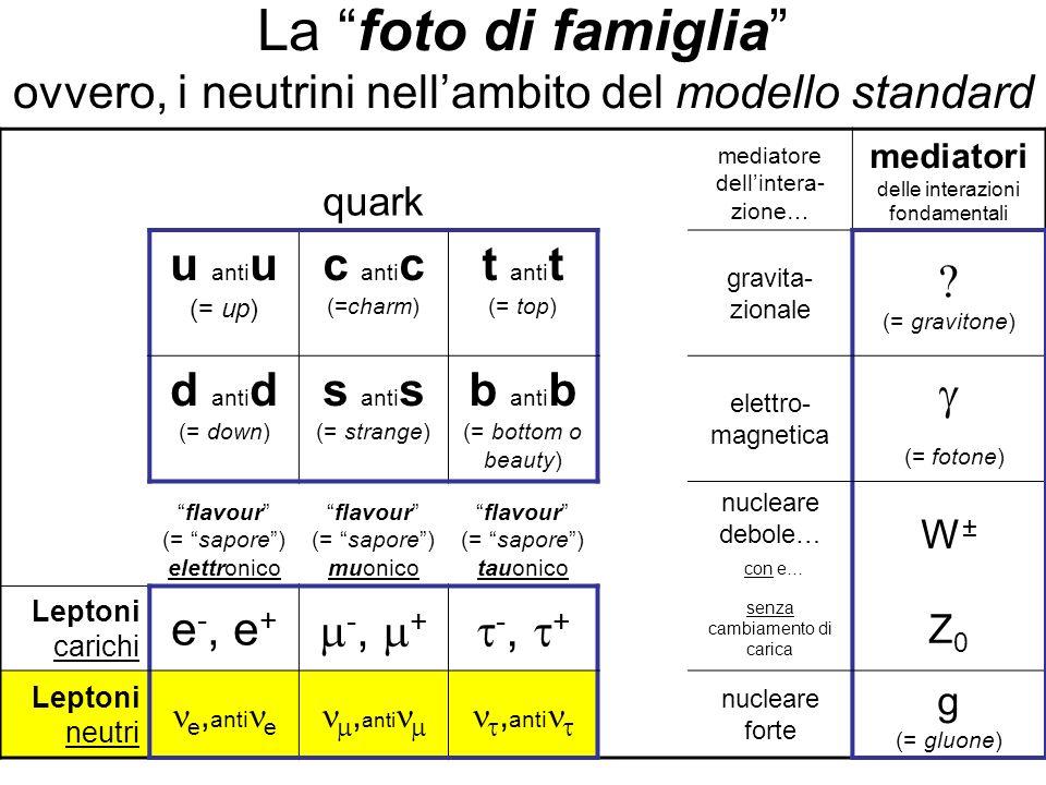 La foto di famiglia ovvero, i neutrini nell'ambito del modello standard