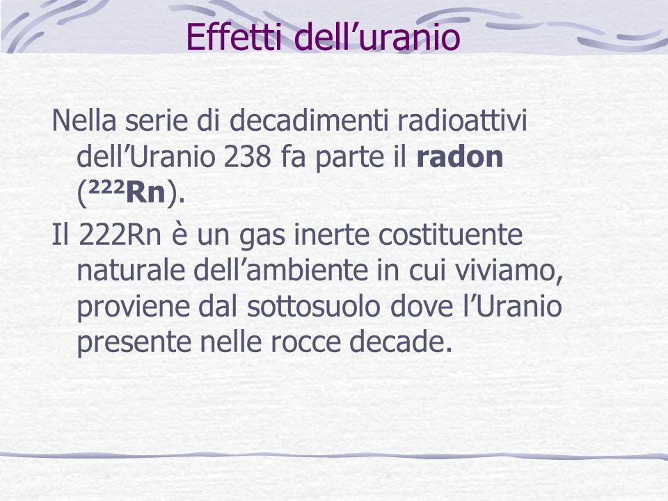 Effetti dell'uranio Nella serie di decadimenti radioattivi dell'Uranio 238 fa parte il radon (222Rn).
