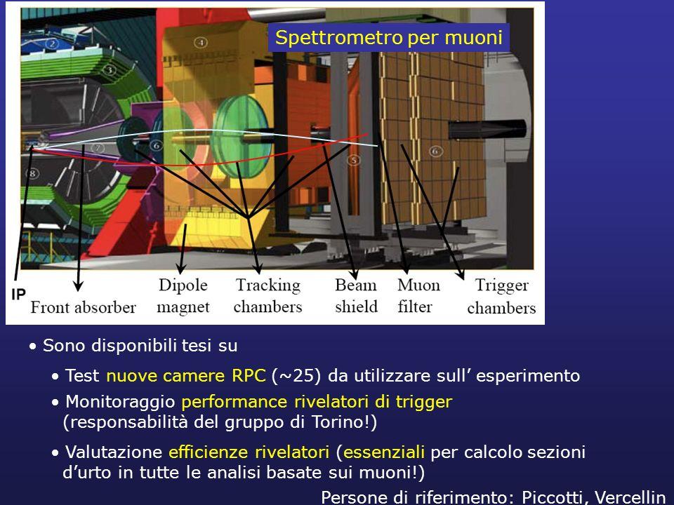 Spettrometro per muoni