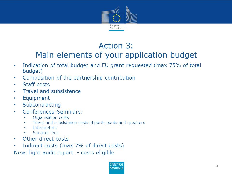 Action 3: Main elements of your application budget