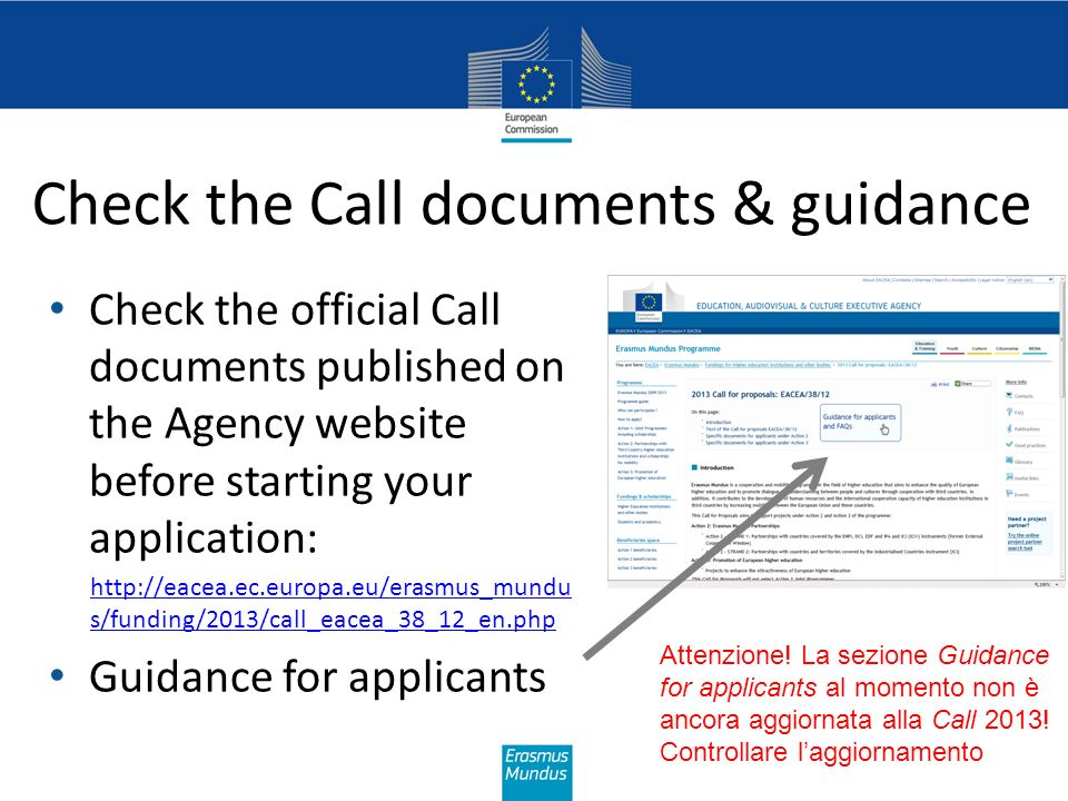 Check the Call documents & guidance