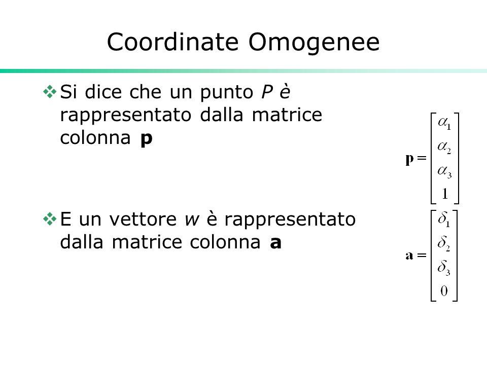 Coordinate Omogenee Si dice che un punto P è rappresentato dalla matrice colonna p.