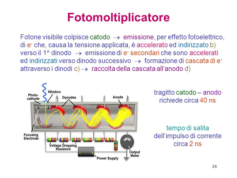Fotomoltiplicatore