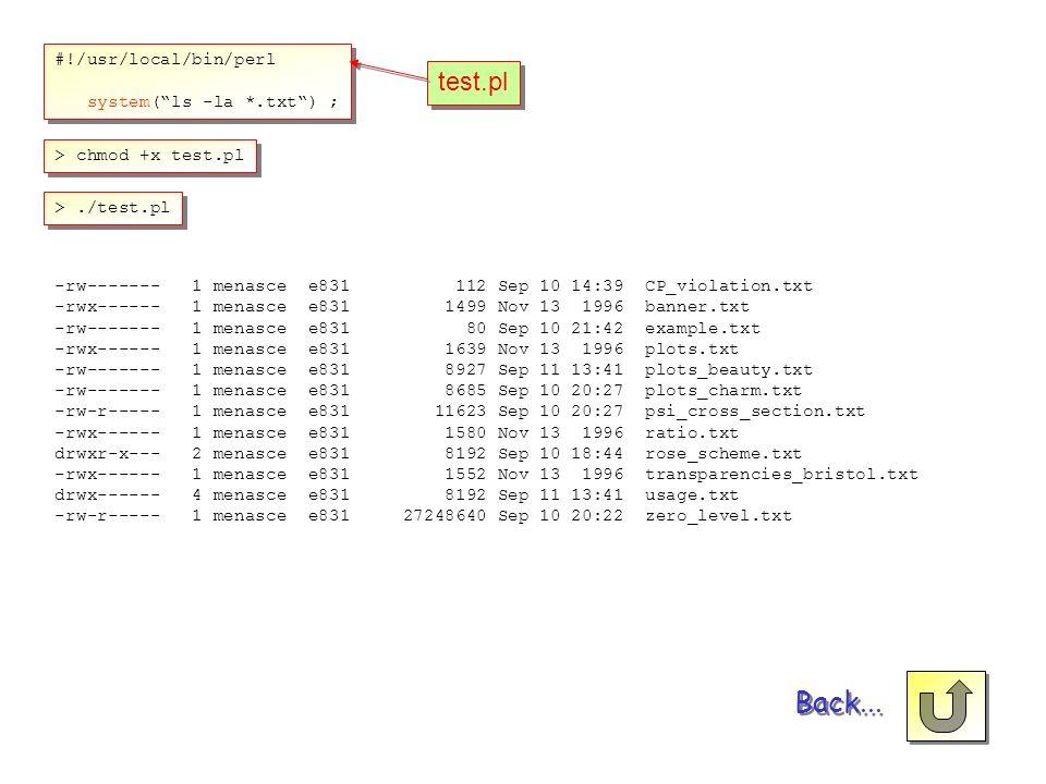 Back... test.pl #!/usr/local/bin/perl system( ls -la *.txt ) ;