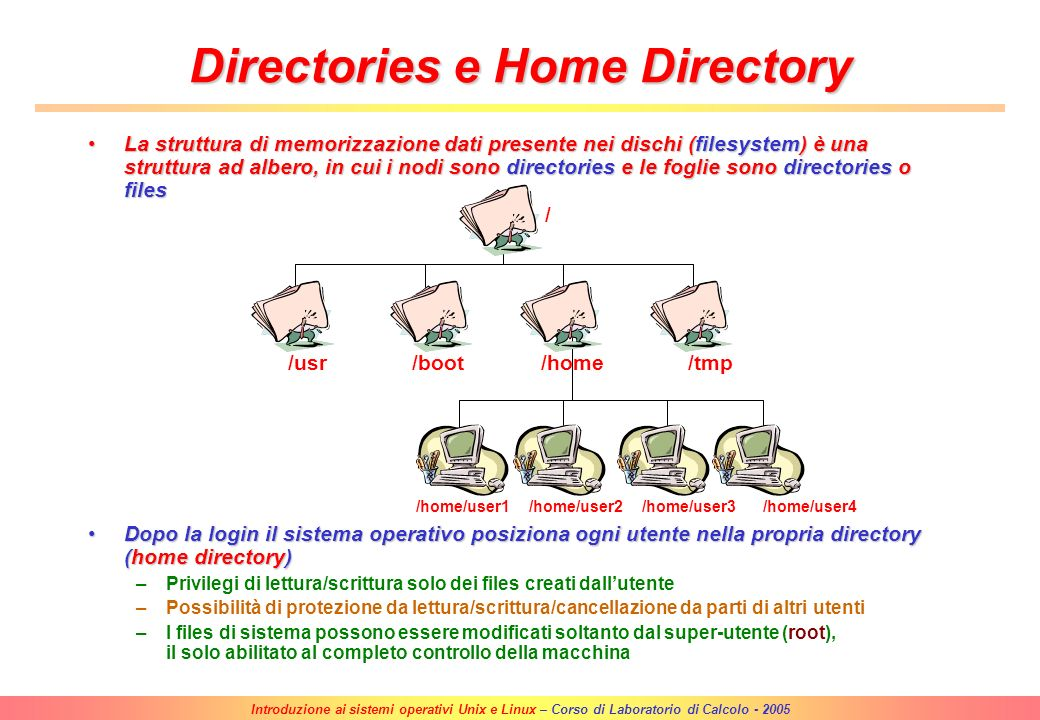 Directories e Home Directory