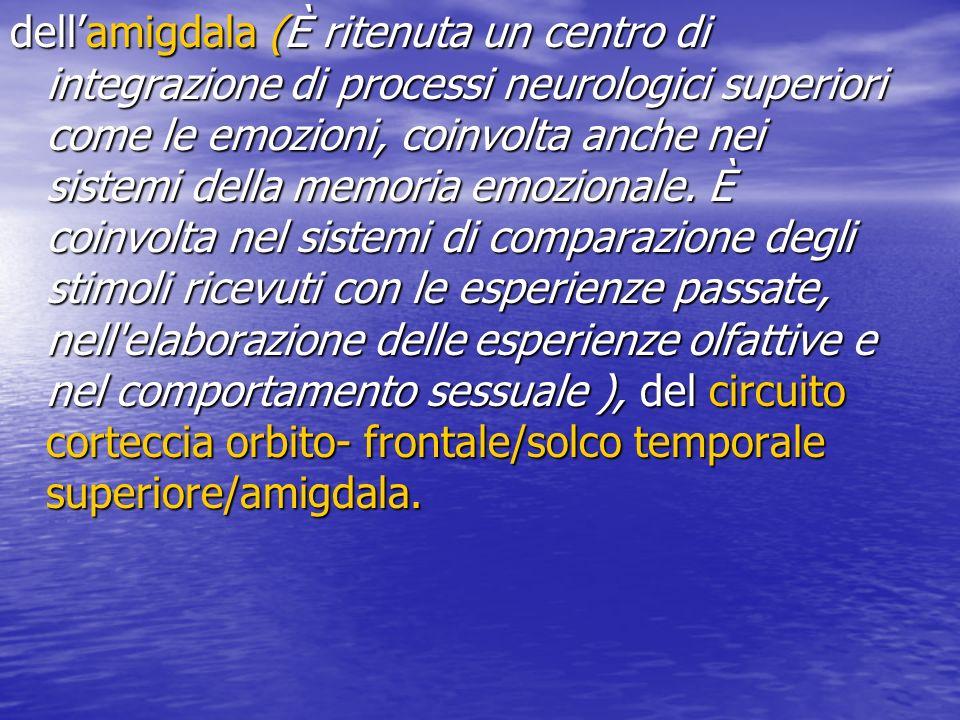dell'amigdala (È ritenuta un centro di integrazione di processi neurologici superiori come le emozioni, coinvolta anche nei sistemi della memoria emozionale.