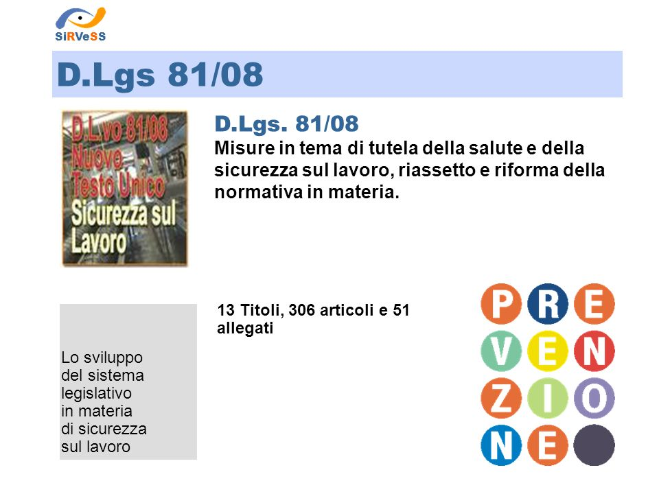 SiRVeSS D.Lgs 81/08. D.Lgs. 81/08.
