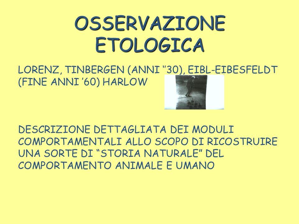 OSSERVAZIONE ETOLOGICA