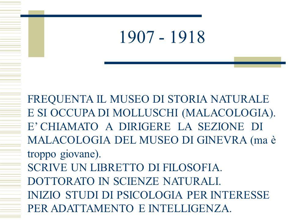 1907 - 1918 FREQUENTA IL MUSEO DI STORIA NATURALE
