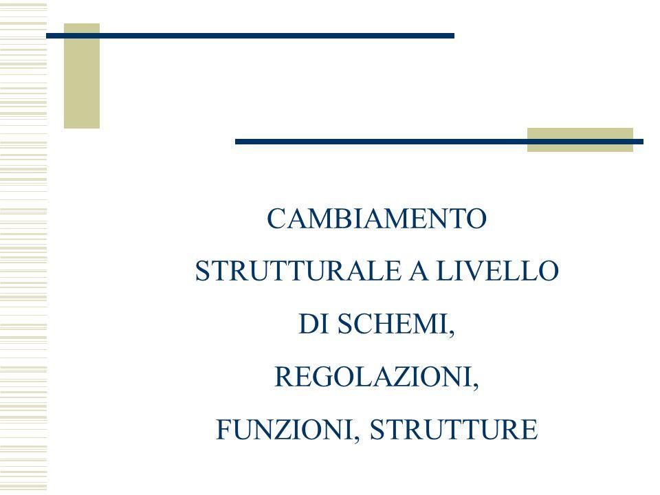 CAMBIAMENTO STRUTTURALE A LIVELLO DI SCHEMI, REGOLAZIONI, FUNZIONI, STRUTTURE