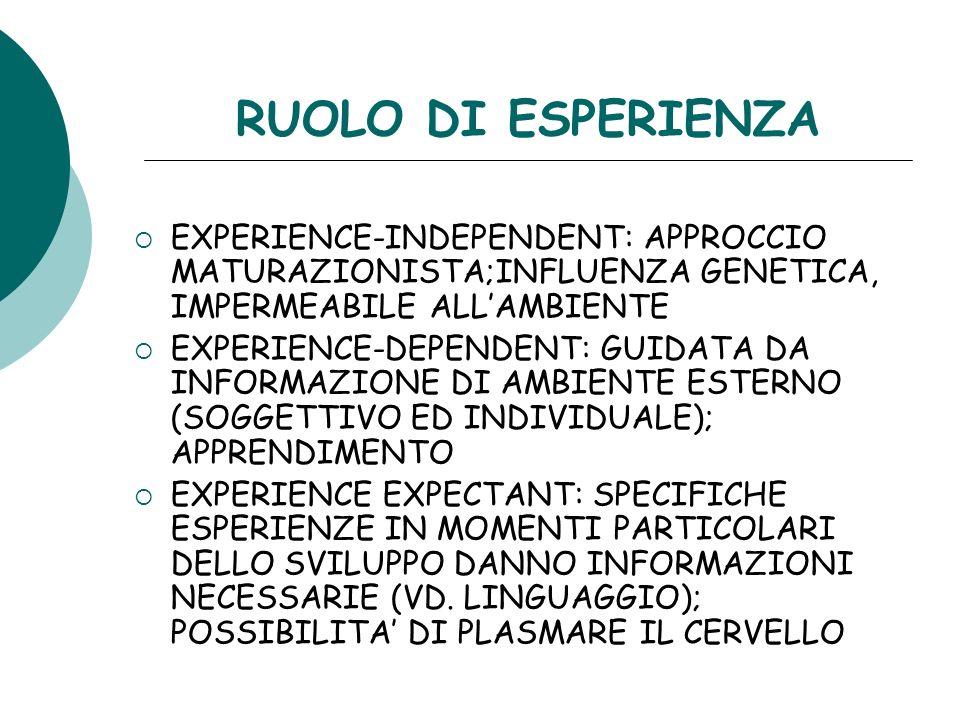 RUOLO DI ESPERIENZA EXPERIENCE-INDEPENDENT: APPROCCIO MATURAZIONISTA;INFLUENZA GENETICA, IMPERMEABILE ALL'AMBIENTE.