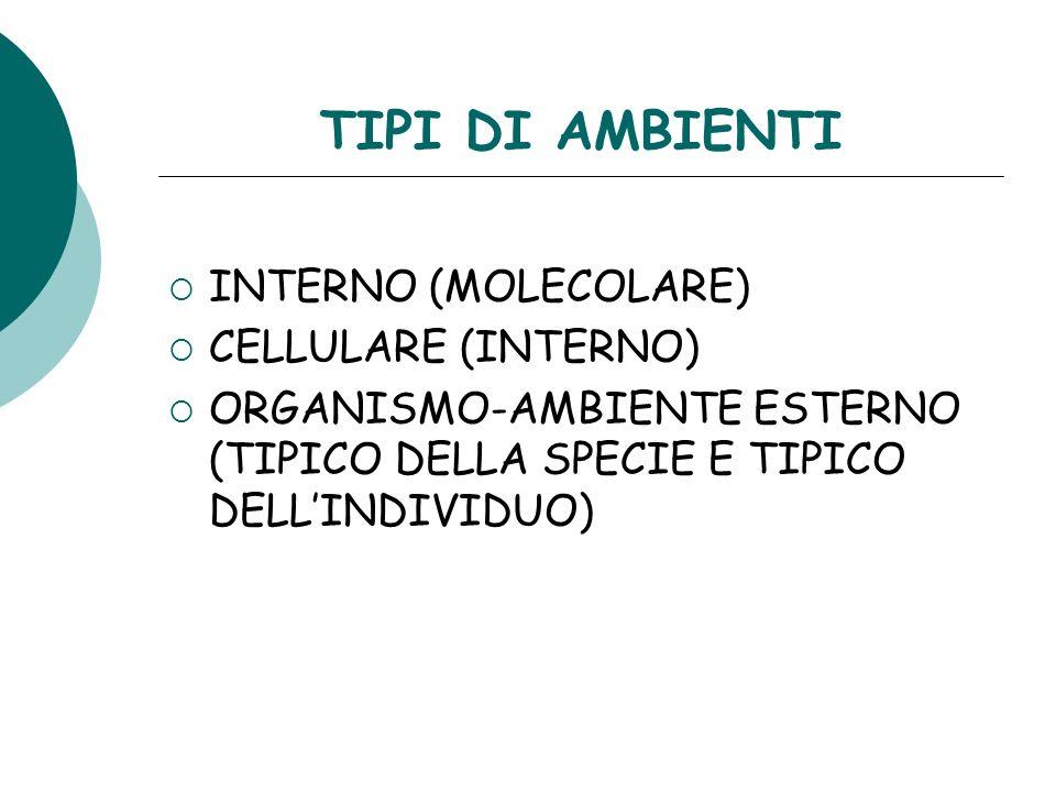 TIPI DI AMBIENTI INTERNO (MOLECOLARE) CELLULARE (INTERNO)