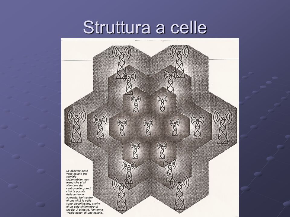 Struttura a celle