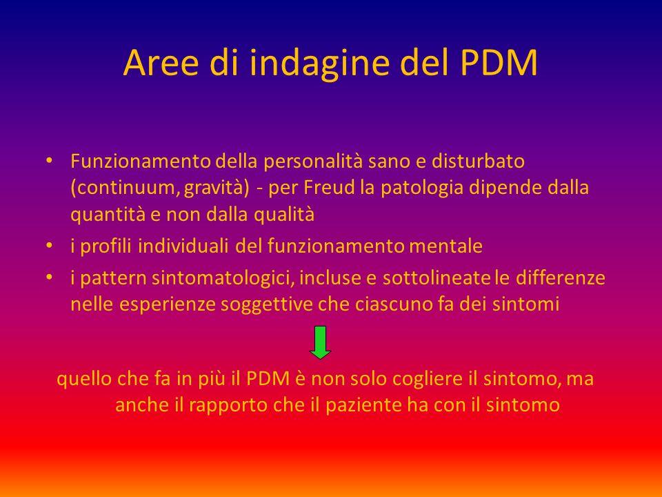 Aree di indagine del PDM