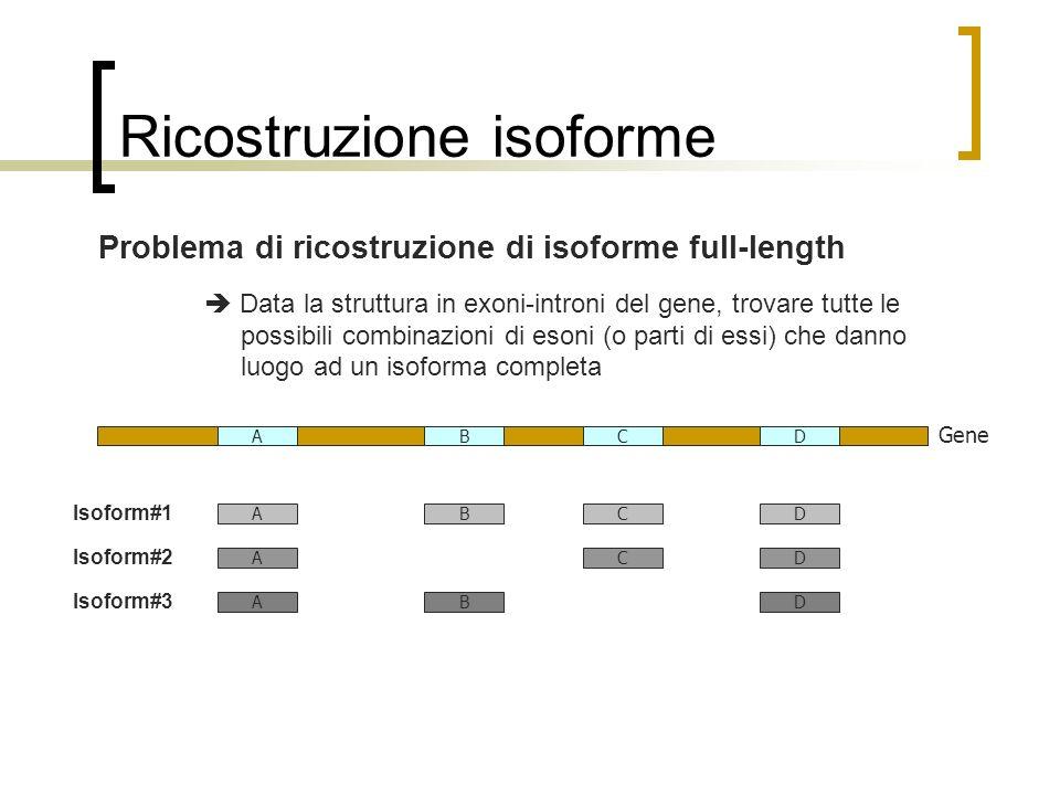 Ricostruzione isoforme