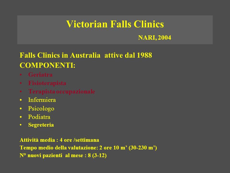 Victorian Falls Clinics NARI, 2004