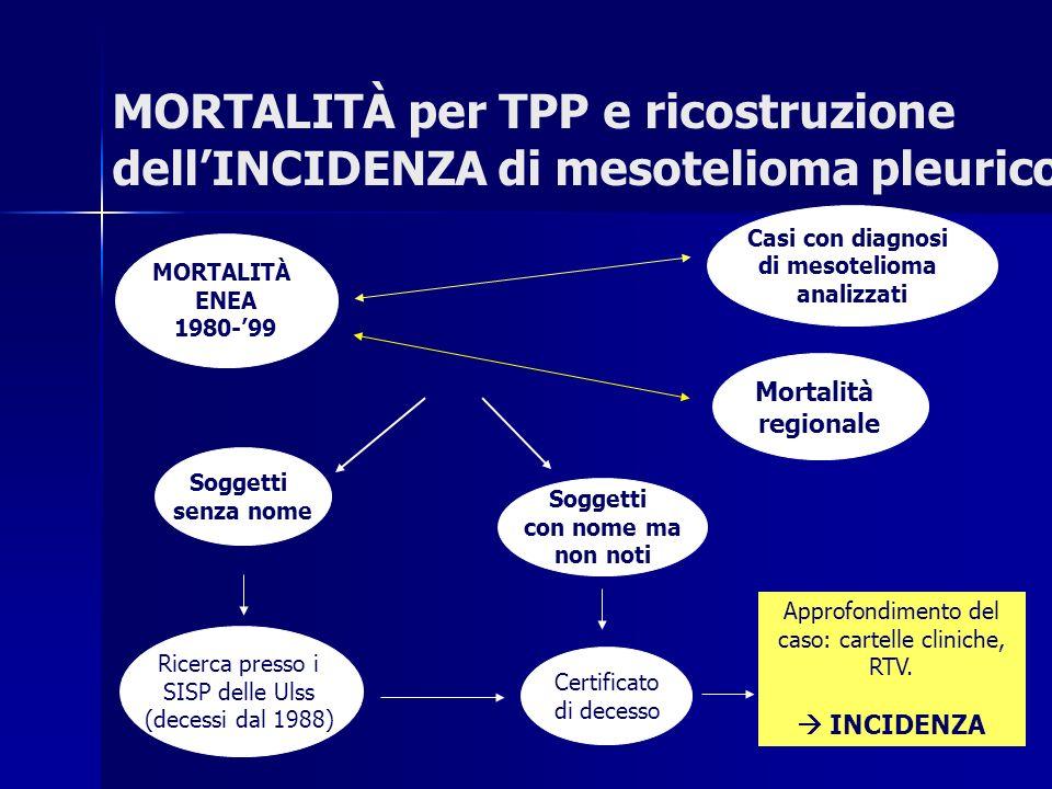 Approfondimento del caso: cartelle cliniche, RTV.