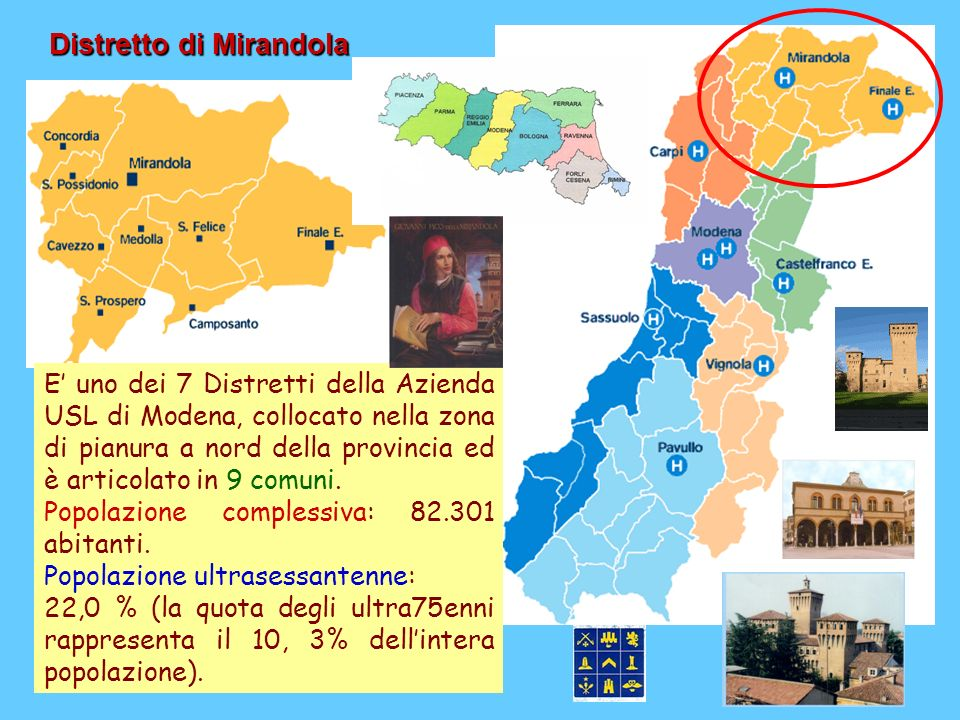 Distretto di Mirandola