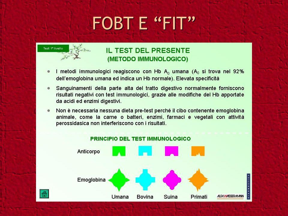 FOBT E FIT