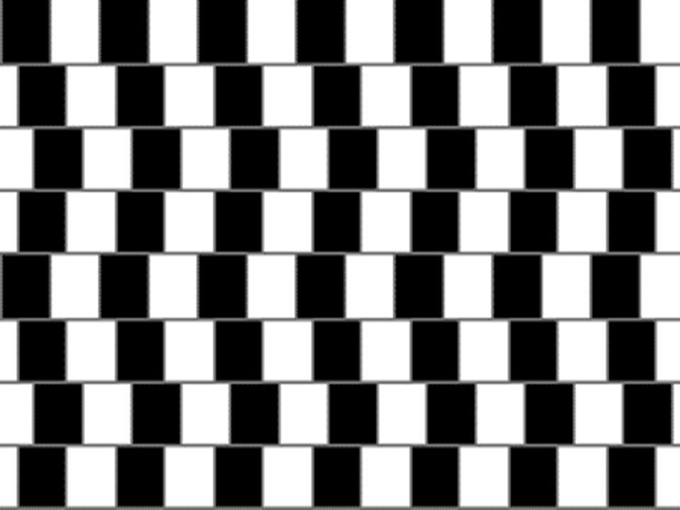 Illusione ottica 3