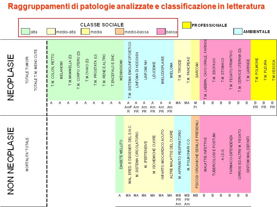 Raggruppamenti di patologie analizzate e classificazione in letteratura