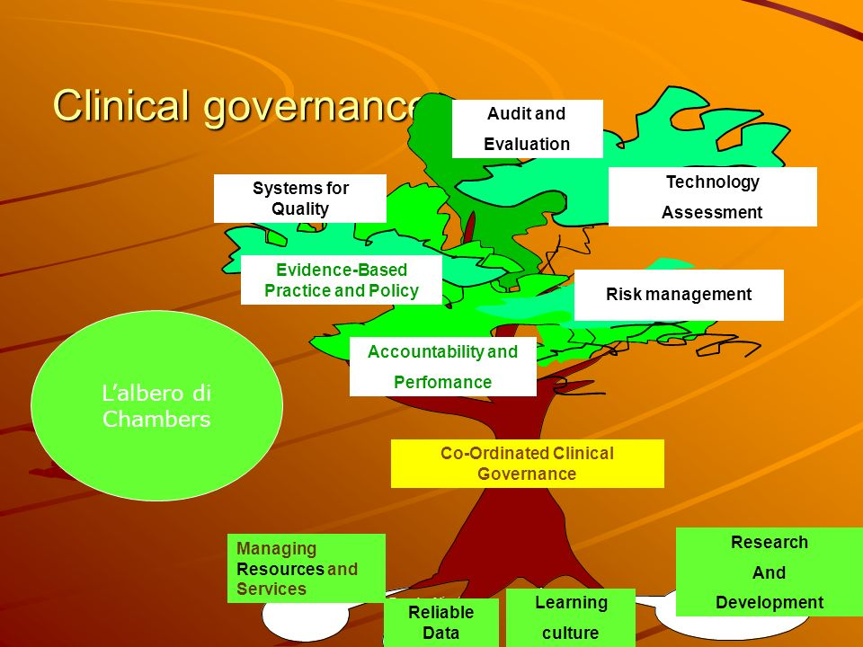 Evidence-Based Practice and Policy Co-Ordinated Clinical Governance