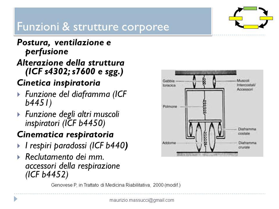 Funzioni & strutture corporee