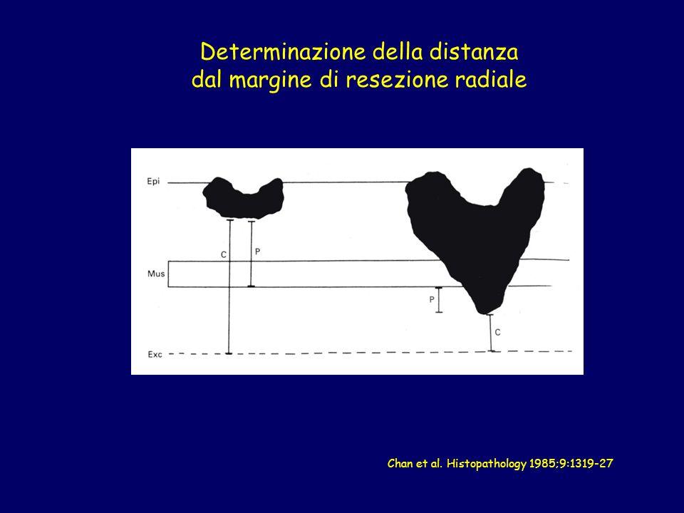 Determinazione della distanza dal margine di resezione radiale