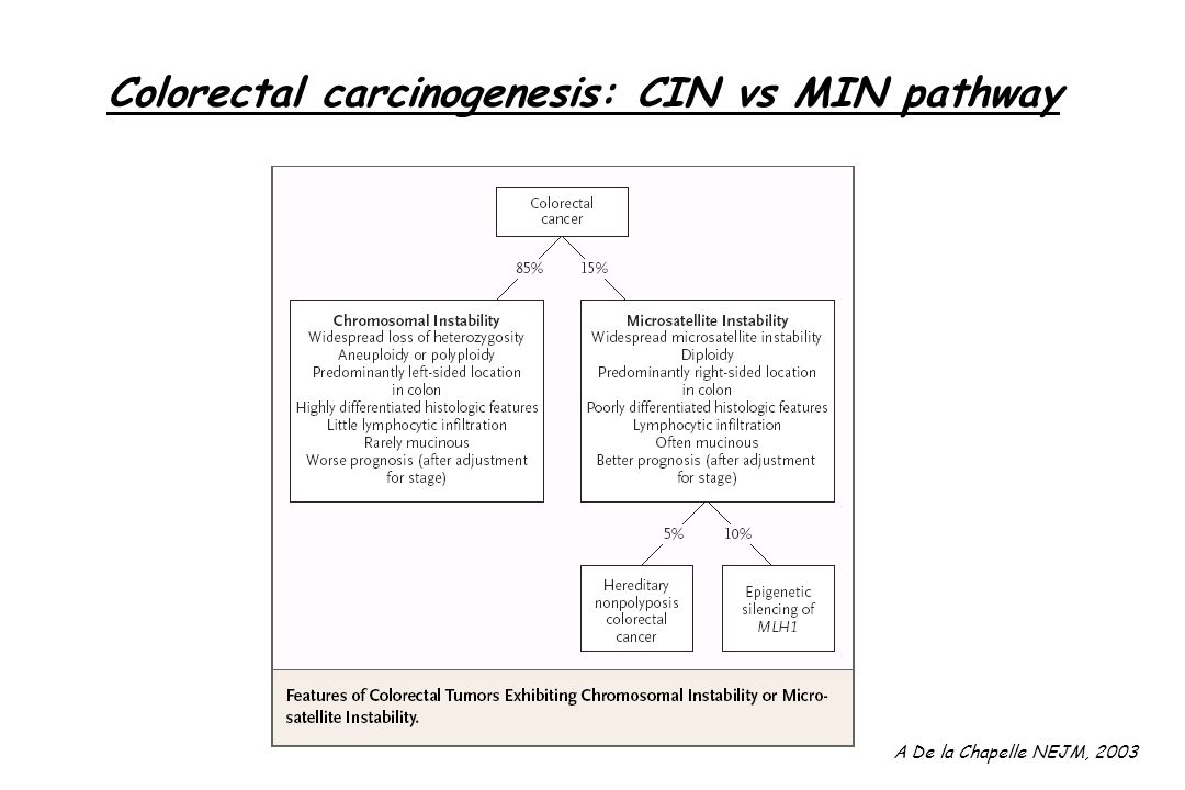 Colorectal carcinogenesis: CIN vs MIN pathway
