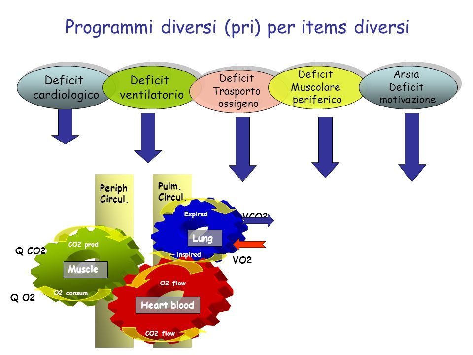 Programmi diversi (pri) per items diversi