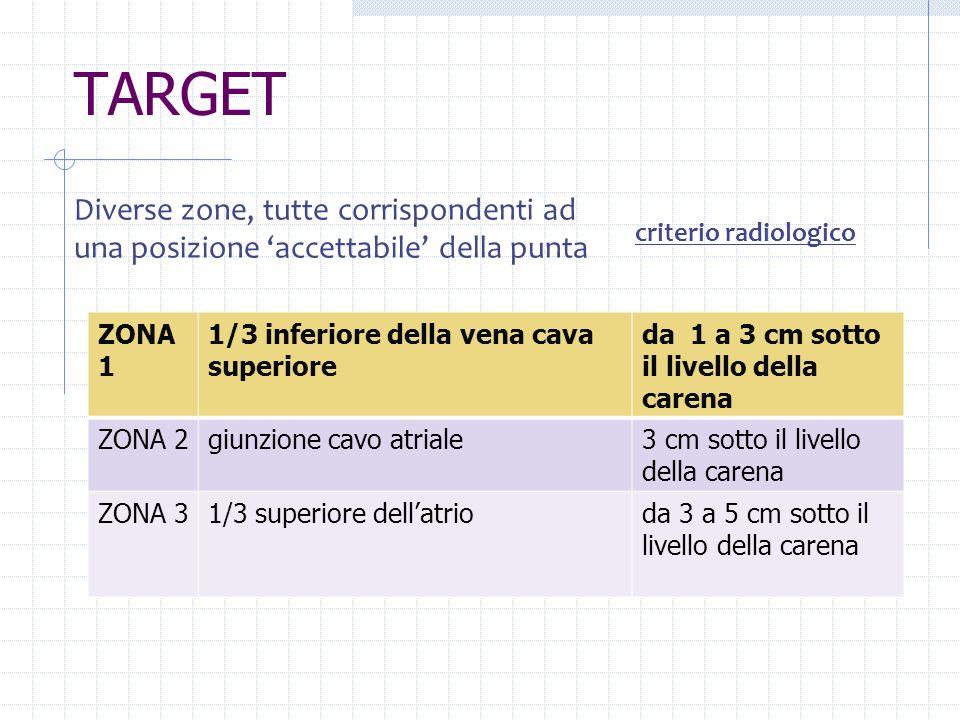 TARGETDiverse zone, tutte corrispondenti ad una posizione 'accettabile' della punta. criterio radiologico.