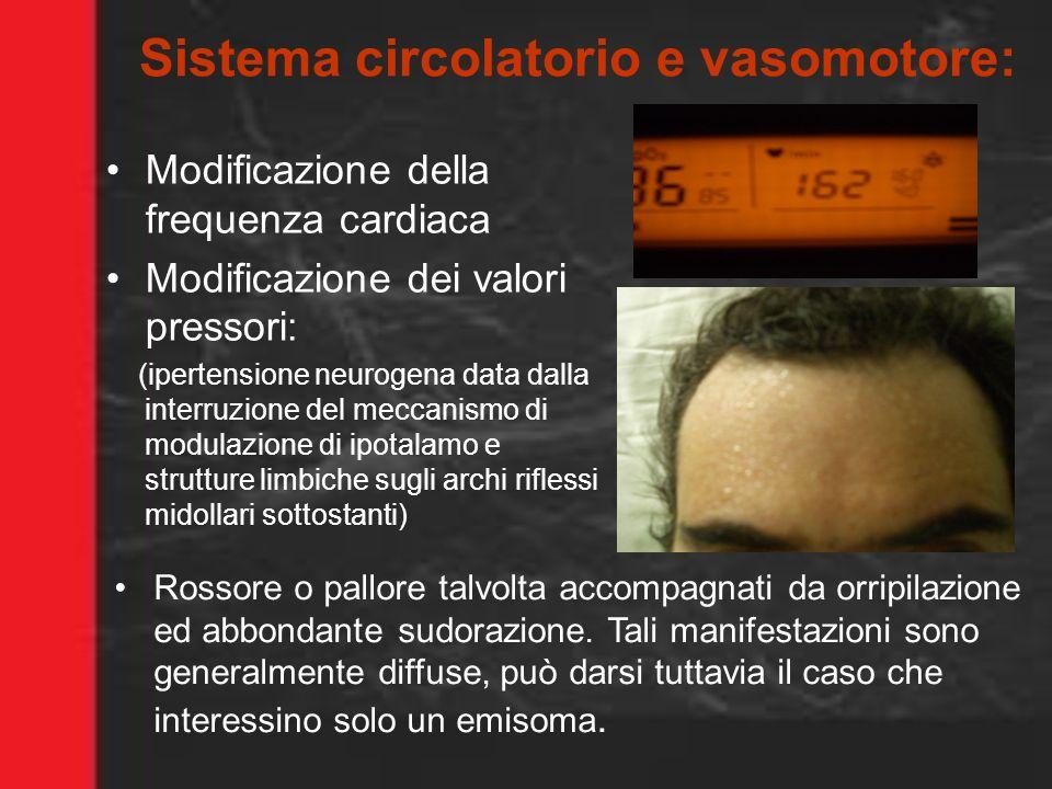 Sistema circolatorio e vasomotore: