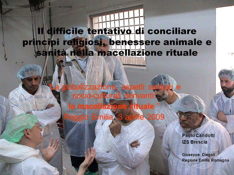 Il difficile tentativo di conciliare principi religiosi, benessere animale e sanità nella macellazione rituale