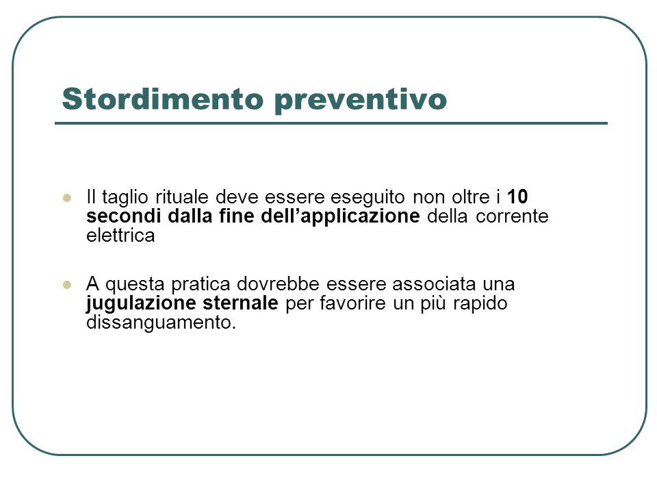 Stordimento preventivo