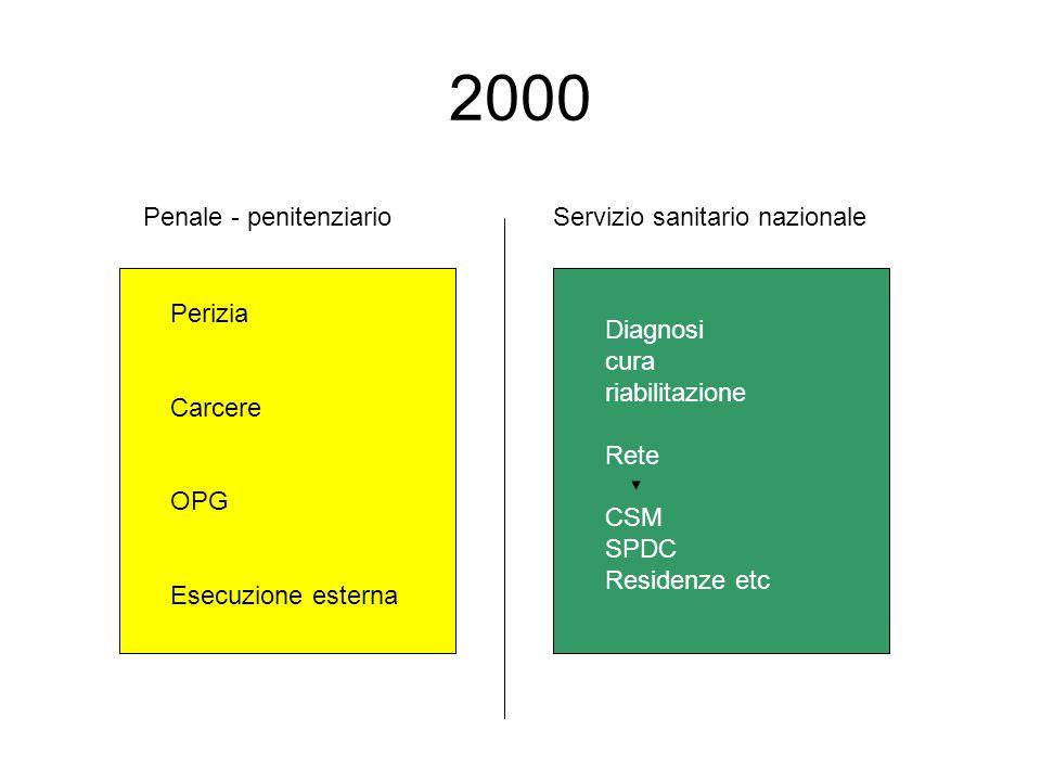 2000 Penale - penitenziario Servizio sanitario nazionale Perizia