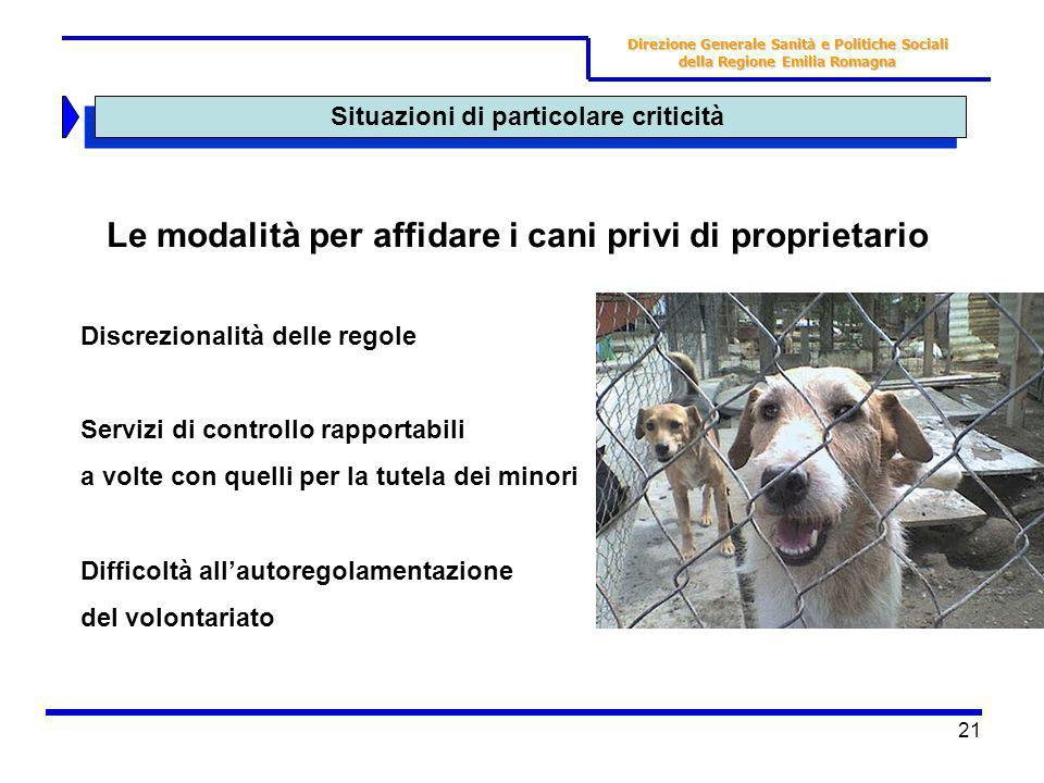 Le modalità per affidare i cani privi di proprietario