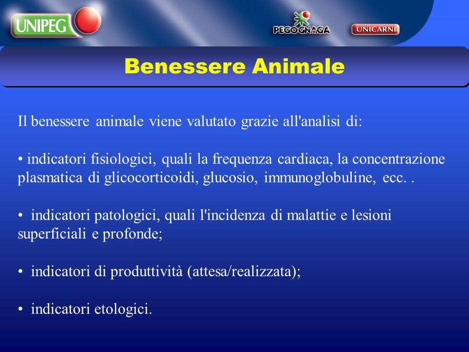 Benessere Animale Il benessere animale viene valutato grazie all analisi di: