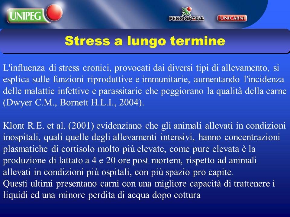 Stress a lungo termine