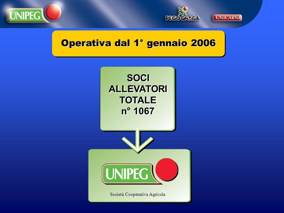 Operativa dal 1° gennaio 2006