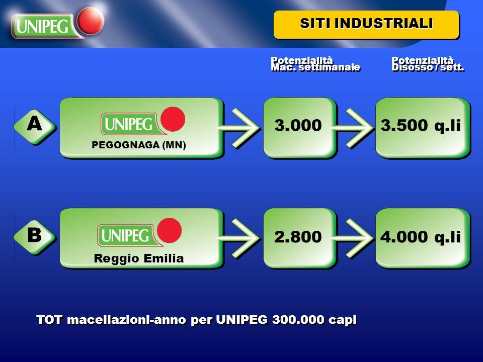 A B 3.000 3.500 q.li 2.800 4.000 q.li SITI INDUSTRIALI Reggio Emilia