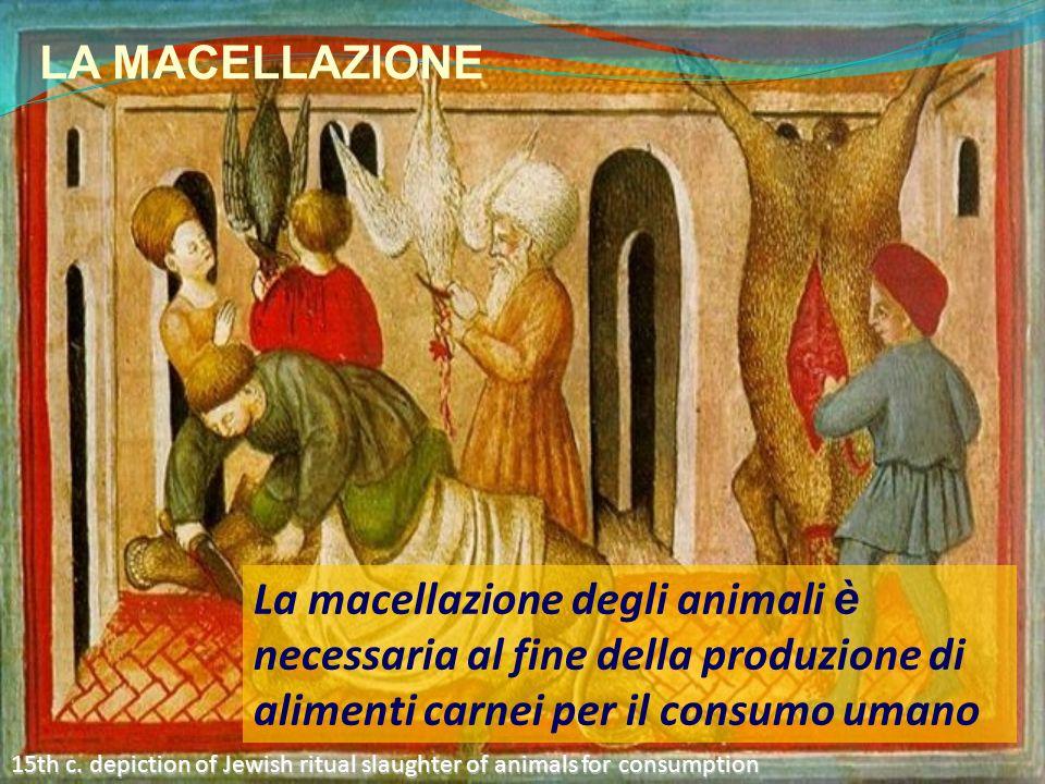 LA MACELLAZIONE La macellazione degli animali è necessaria al fine della produzione di alimenti carnei per il consumo umano.