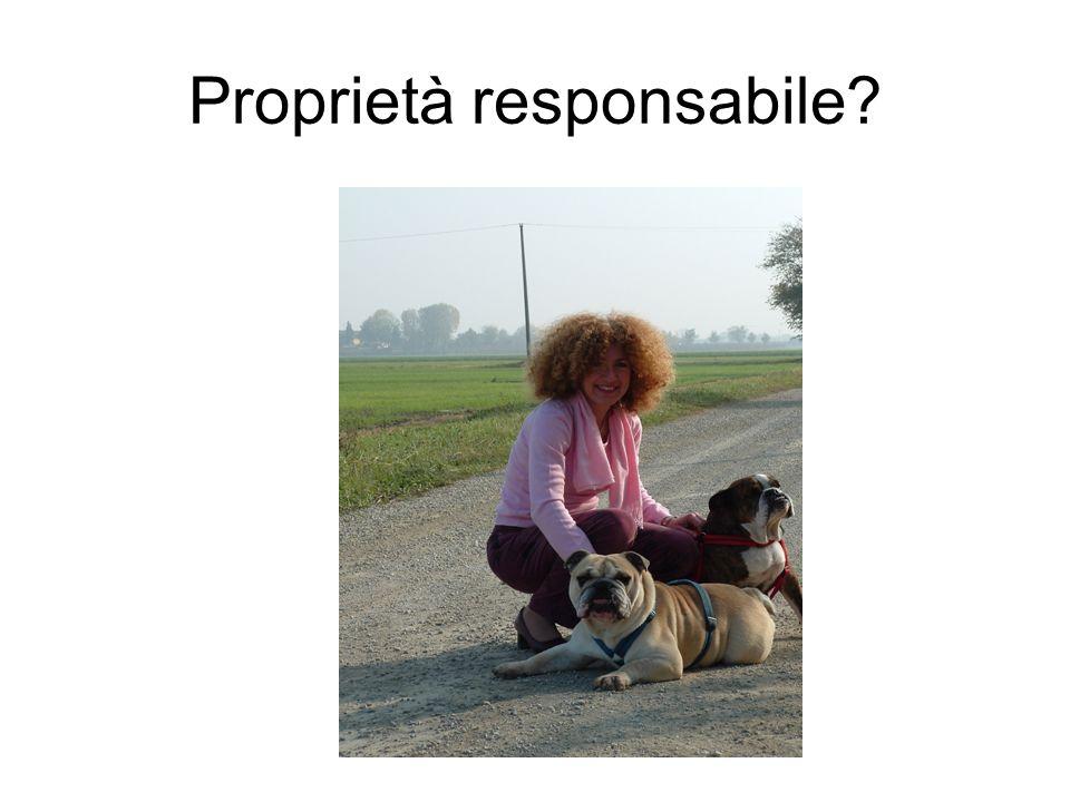 Proprietà responsabile