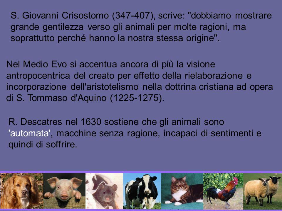S. Giovanni Crisostomo (347-407), scrive: dobbiamo mostrare grande gentilezza verso gli animali per molte ragioni, ma soprattutto perché hanno la nostra stessa origine .