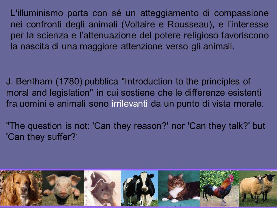 L illuminismo porta con sé un atteggiamento di compassione nei confronti degli animali (Voltaire e Rousseau), e l'interesse per la scienza e l'attenuazione del potere religioso favoriscono la nascita di una maggiore attenzione verso gli animali.