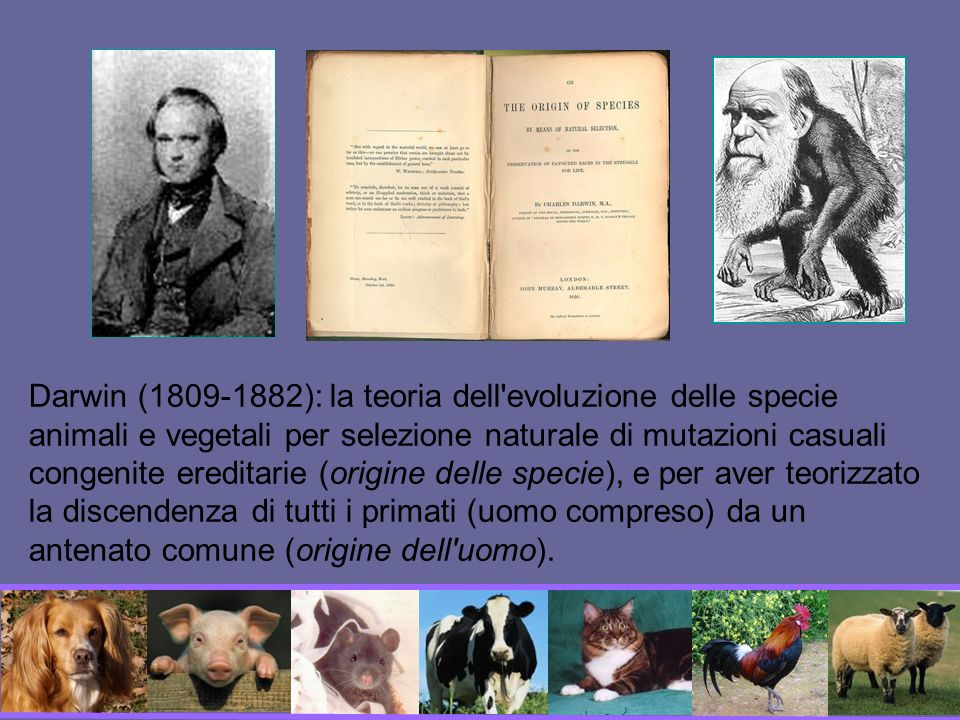 Darwin (1809-1882): la teoria dell evoluzione delle specie animali e vegetali per selezione naturale di mutazioni casuali congenite ereditarie (origine delle specie), e per aver teorizzato la discendenza di tutti i primati (uomo compreso) da un antenato comune (origine dell uomo).