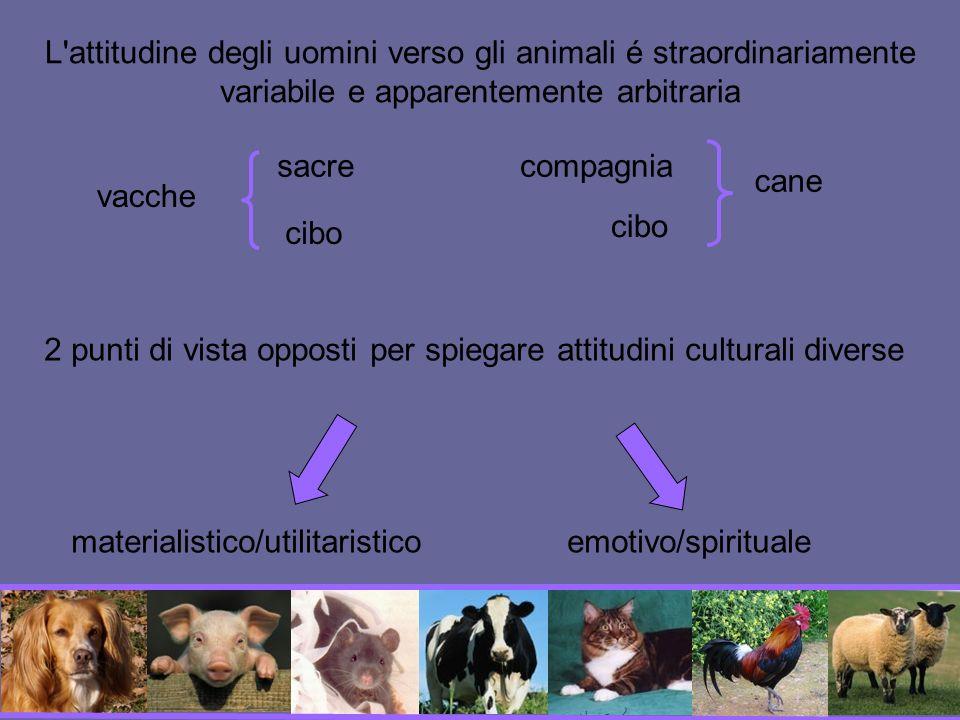 2 punti di vista opposti per spiegare attitudini culturali diverse