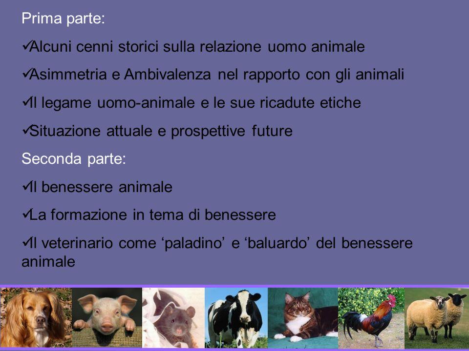 Prima parte:Alcuni cenni storici sulla relazione uomo animale. Asimmetria e Ambivalenza nel rapporto con gli animali.