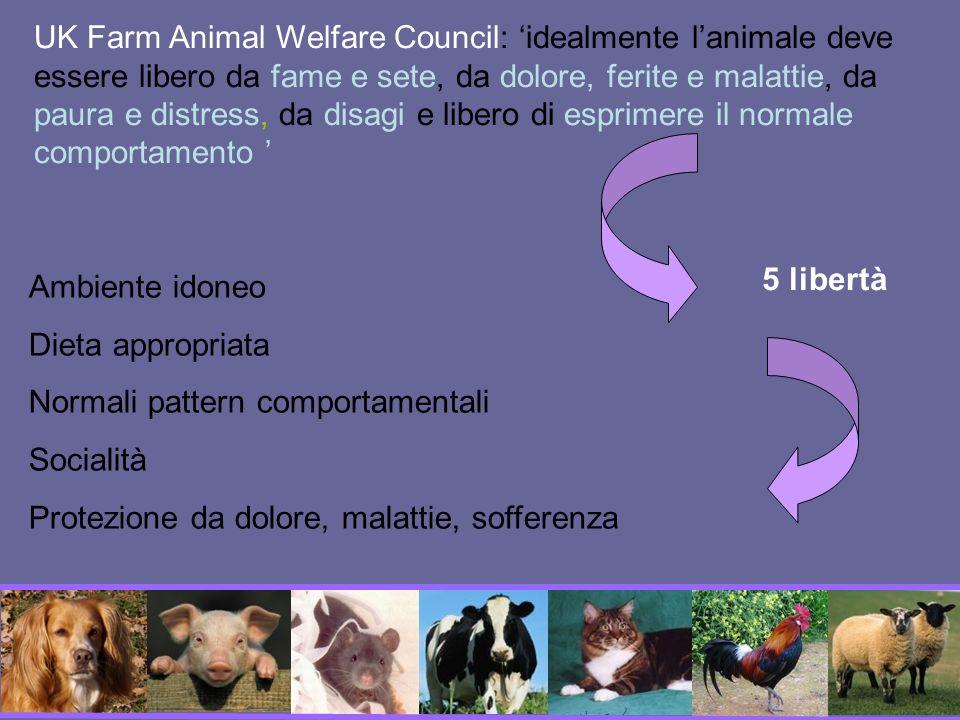 UK Farm Animal Welfare Council: 'idealmente l'animale deve essere libero da fame e sete, da dolore, ferite e malattie, da paura e distress, da disagi e libero di esprimere il normale comportamento '